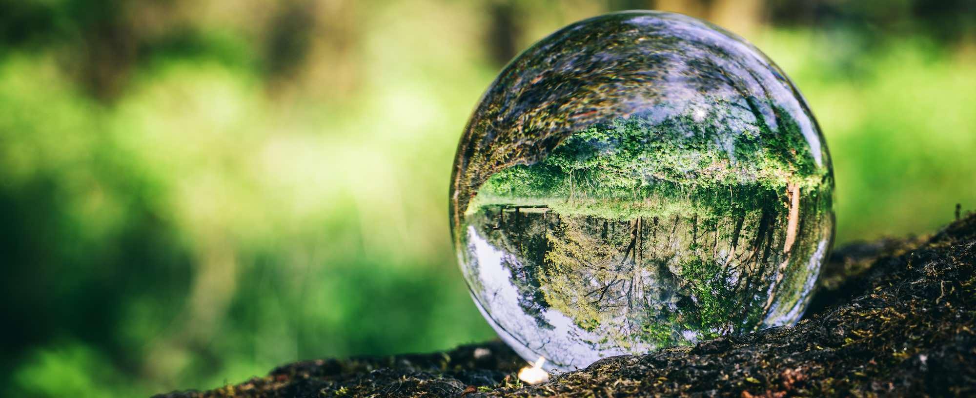 Lensball posée sur le sol dans une forêt
