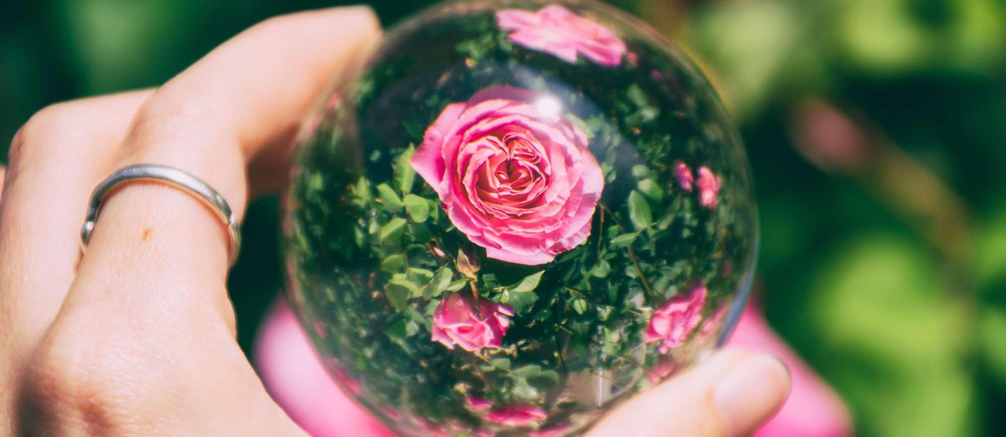 Photographie d'une lensball devant des roses