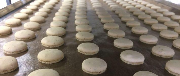 biscuit-sucre-sans-gluten-vegan-bio-artzenco-1