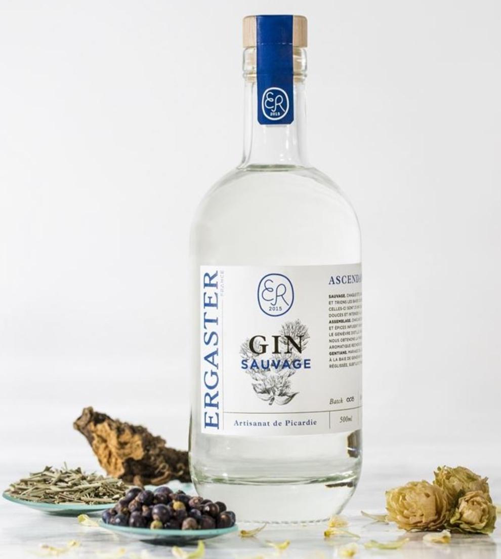 Gin ASCENDANCE Ergaster