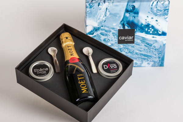 Coffret Glaçon Caviars Champagne et cuillères