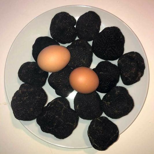 Truffes noires-