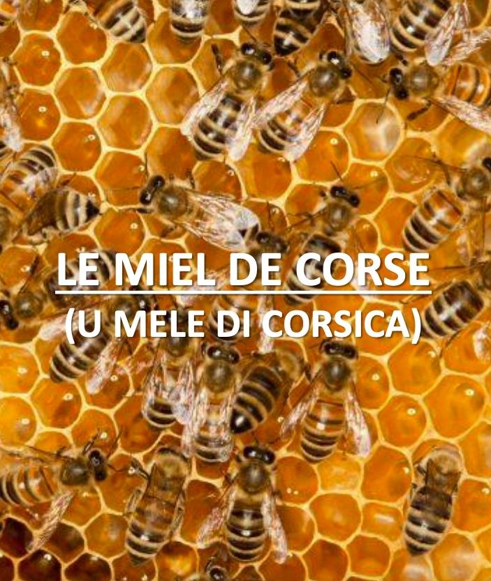 Le miel de Corse AOP logo et abeille www.luxfood-shop.fr