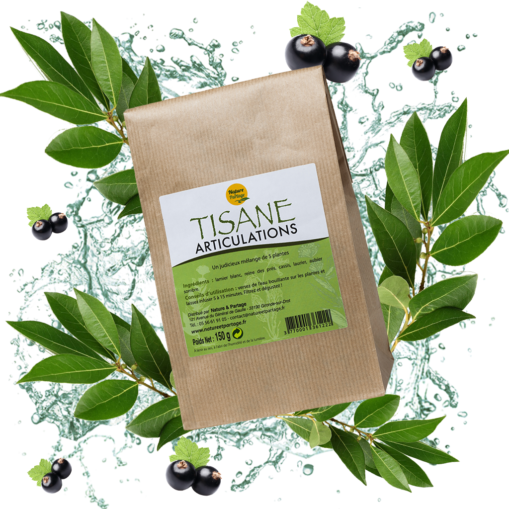 TISANE ARTICULATION - 150g