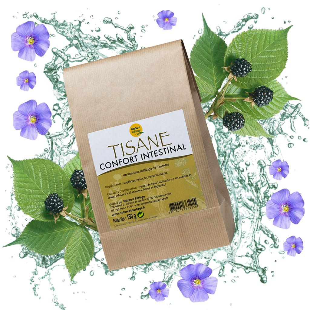 TISANE CONFORT INTESTINAL - 150g