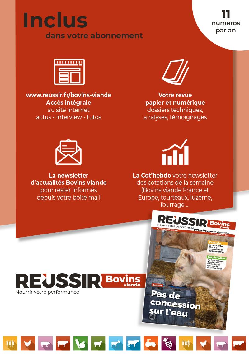 Boutique-Revues-BV