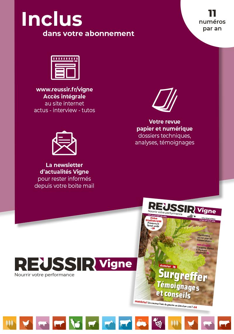 Boutique-Revues-VI