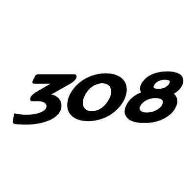 Sticker PEUGEOT sport ref 53