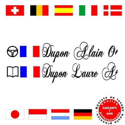 Stickers NOMS DE PILOTE ref E