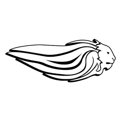 Sticker APRILIA ref 29