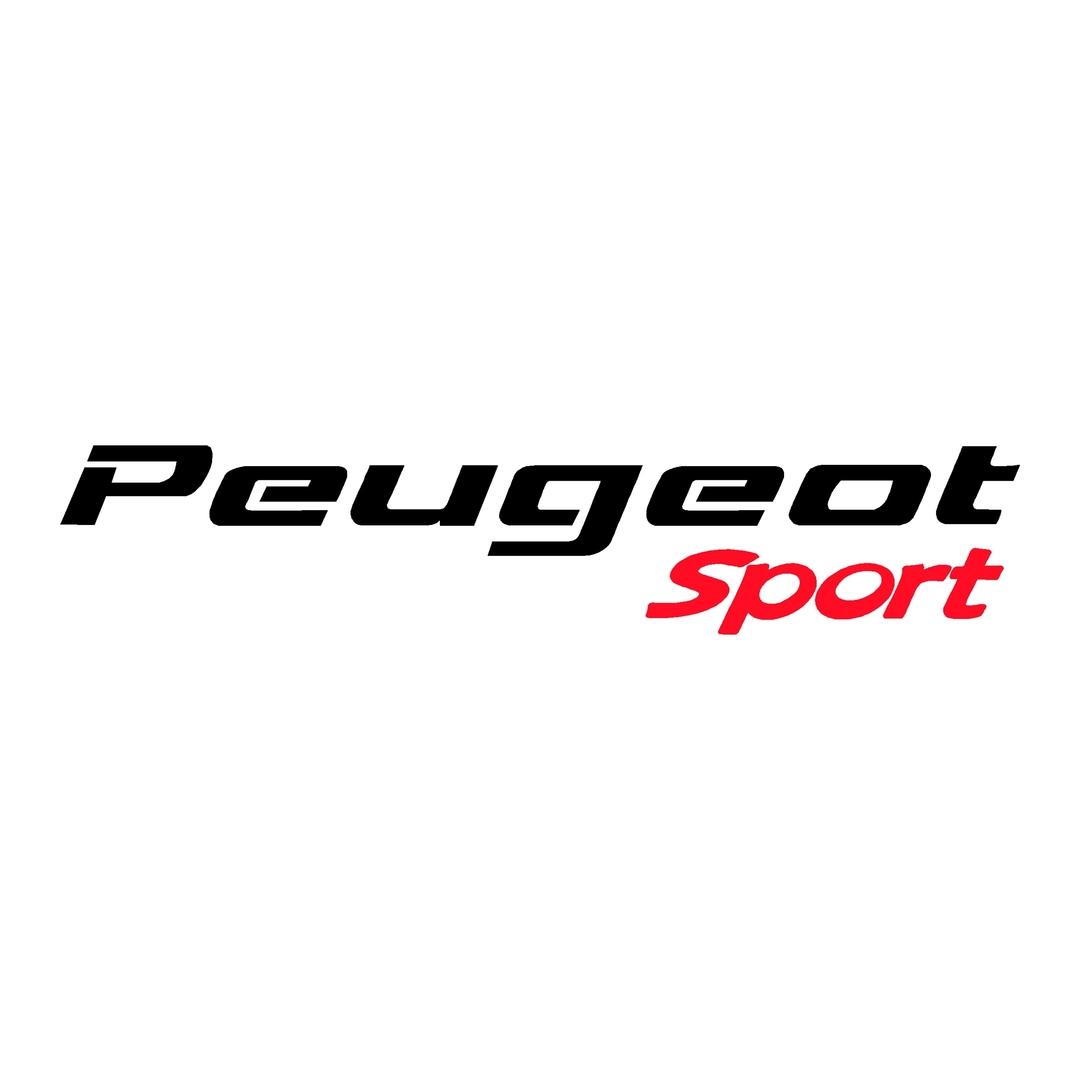 stickers-peugeot-ref33-auto-tuning-rallye-compétision-deco-adhesive-autocollant-sport