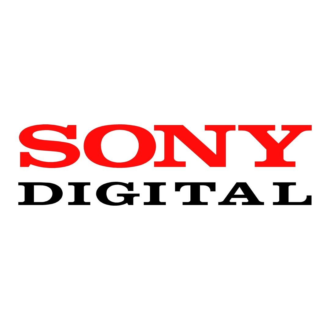 sticker sony ref 2-tuning-audio-sonorisation-car-auto-moto-camion-competition-deco-rallye-autocollant