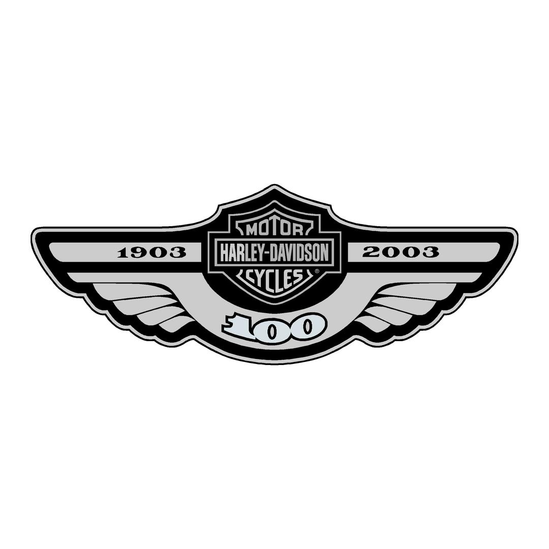 sticker-harley-davidson-ref11-bar-shield-company-flammes-moto-autocollant-casque