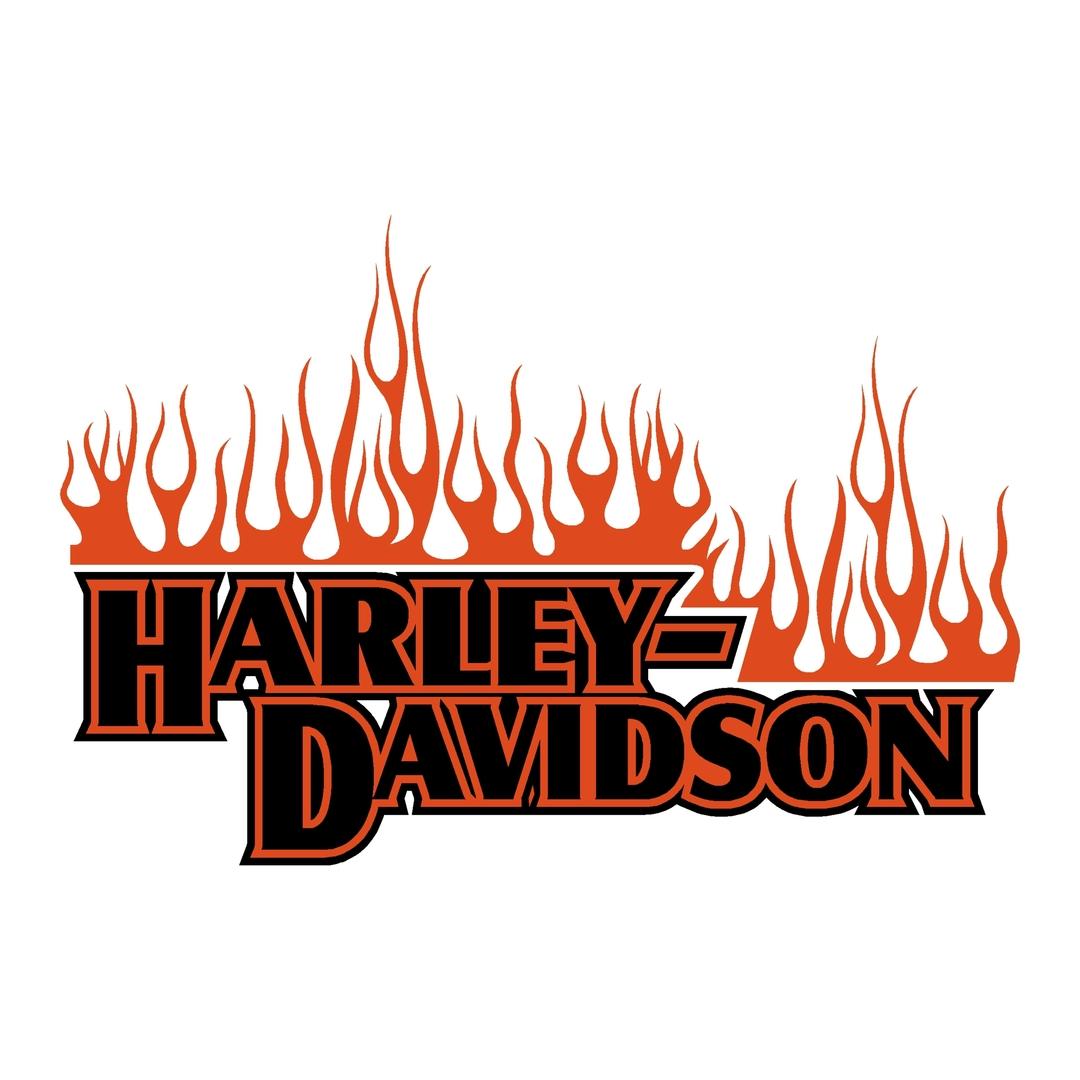 sticker-harley-davidson-ref34-bar-shield-flammes-moto-autocollant-casque