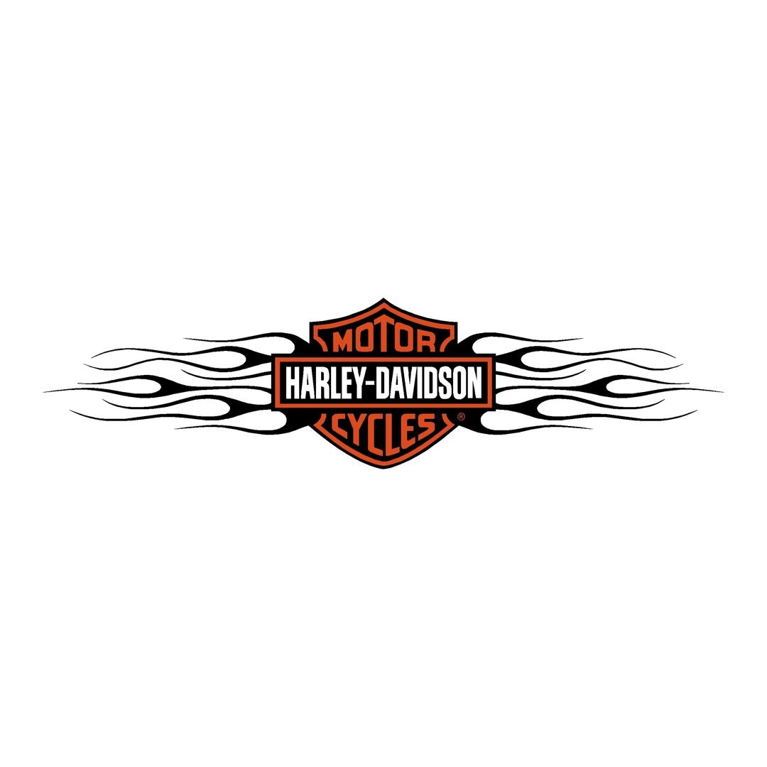 sticker-harley-davidson-ref13-bar-shield-company-flammes-moto-autocollant-casque