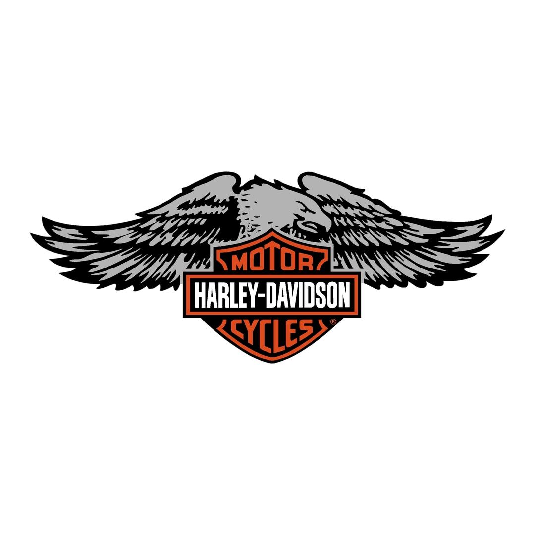 sticker-harley-davidson-ref72-bar-shield-aigle-moto-autocollant-casque-tuning-deco-motar