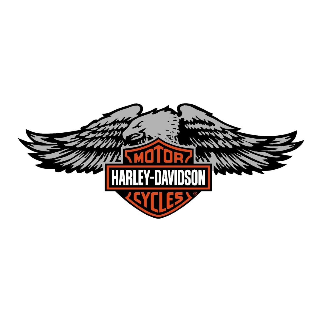 sticker-harley-davidson-ref73-bar-shield-aigle-moto-autocollant-casque-tuning-deco-motar