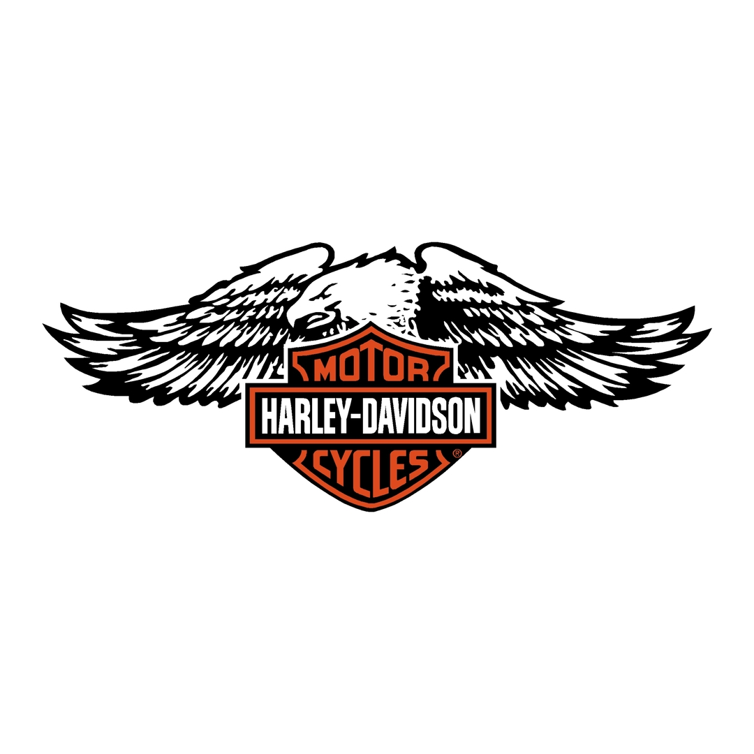 sticker-harley-davidson-ref75-bar-shield-aigle-moto-autocollant-casque-tuning-deco-motar