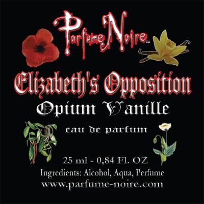 Elizabeth's Opposition