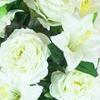 BB92W blanc