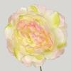 BB94CP rose-creme