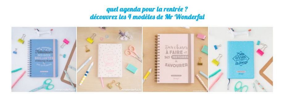 agenda 2016-2017 mr wonderful