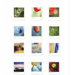 """12 cartes-mantras """"semeurs de délicatesse"""""""