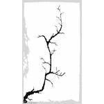 cerisier-a-empreintes