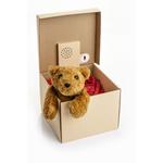 Boite-cadeau qui délivre votre message personnalisé enregistré