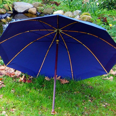 Parapluie de Berger