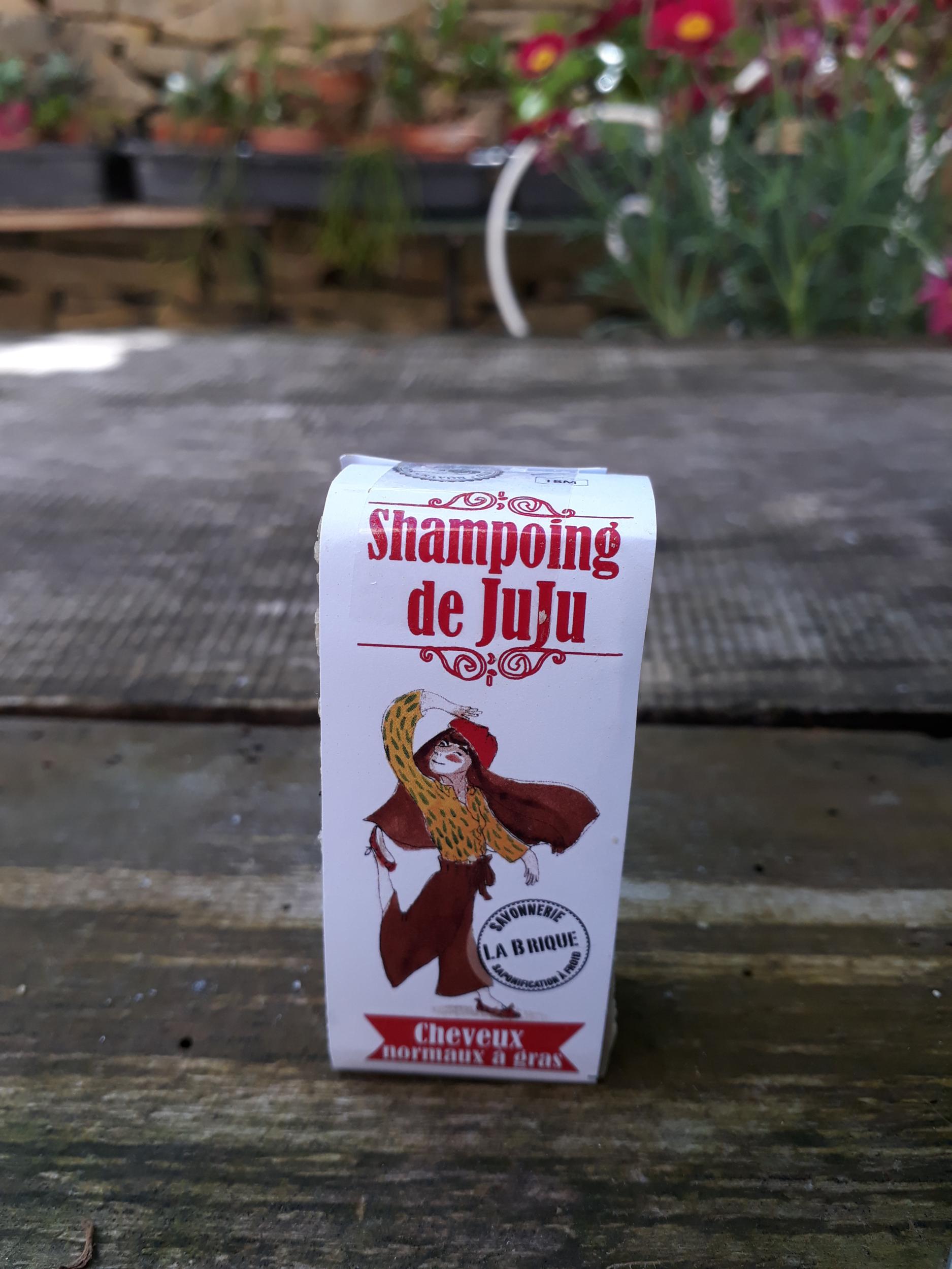 Le shampoing de Juju - 40g