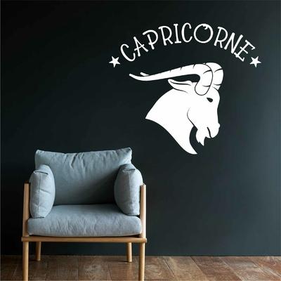 Stickers Capricorne signe Zodiac