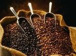 les variétés de cafés