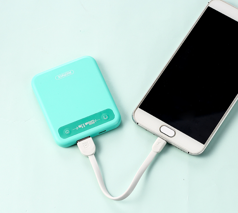 Power Bank - 2 500 mAh - 1X