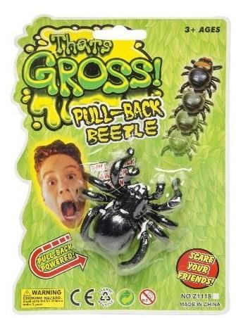 Araignée Noire Rampante