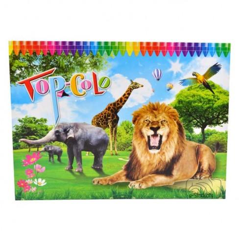 kleurboek topcolo leeuw-488x488