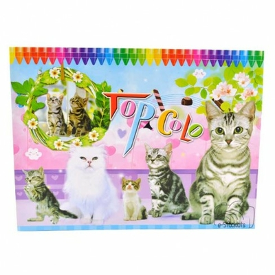 Album Coloriage Fantaisie pour coloriage d'anniversaire
