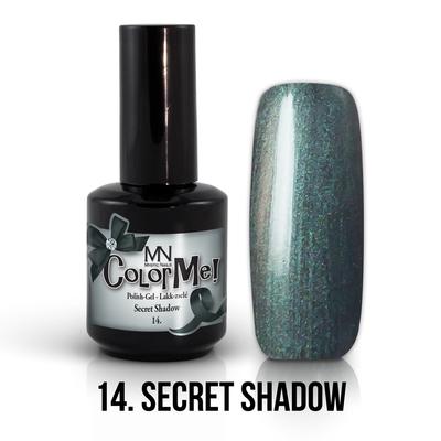 014_Secret_shadow_2016