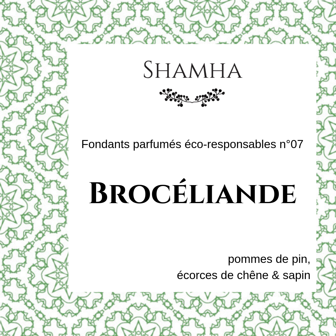 Fondants Parfumés n°07 : BROCELIANDE