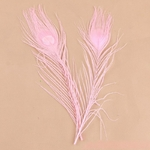 1-pc-27-cm-Rose-Paon-Plume-Cheveux-Flamants-Roses-Belle-Tir-Props-D-coration-De