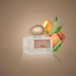 IG_Silver_Orange