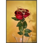 Eternelle Rose enchantée