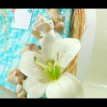 urne mariage coquillage dentelle turquoise blanc