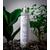 Ajania - Ajania soin traitant végétal bio - 250 ml