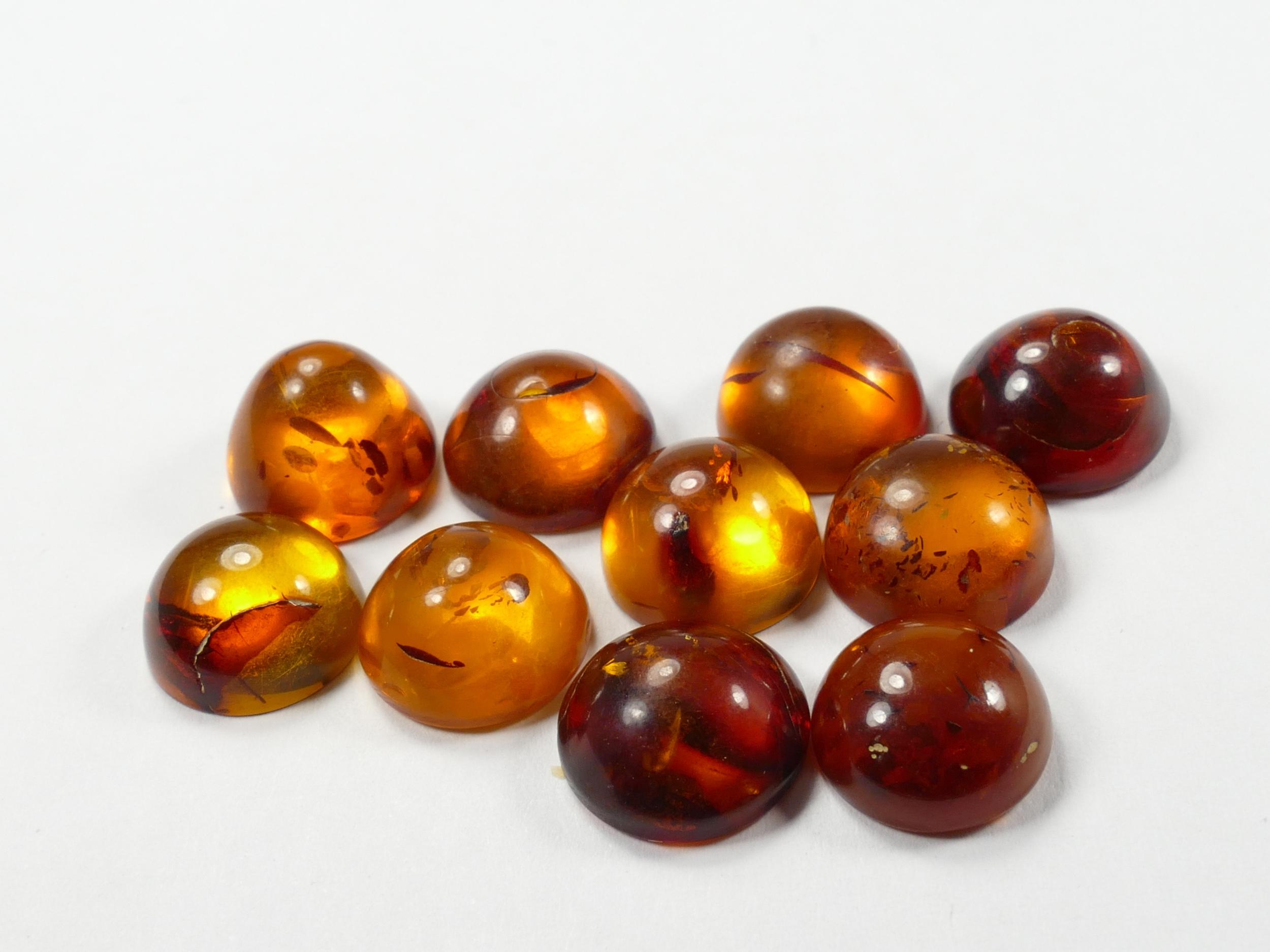 10mm Lot de 10 Ambre naturel natif de la Mer Baltique en cabochon rond orange jaune cognac (#PM123)