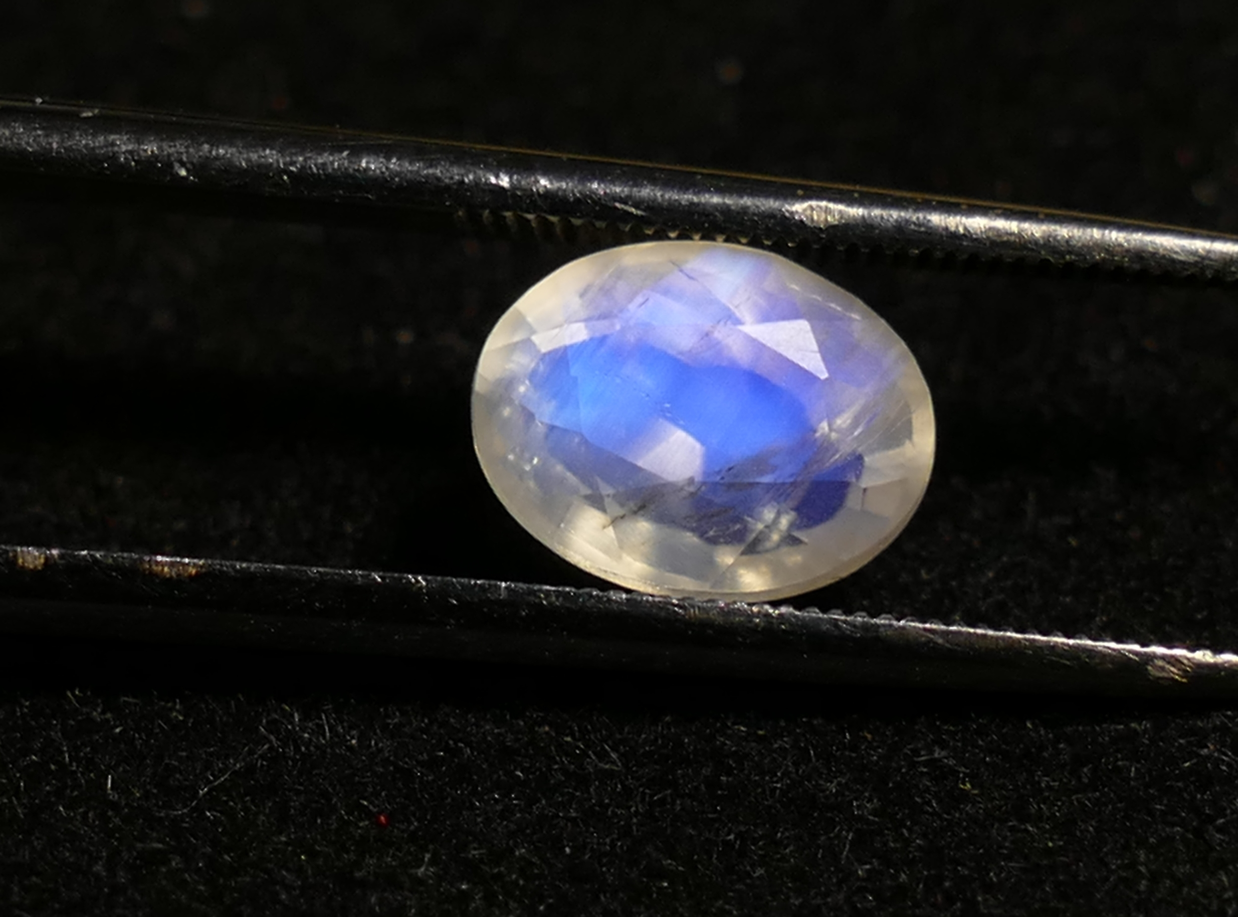 8x6mm Pierre de lune bleu naturelle arc-en-ciel bleu facettée ovale 1.44ct Inde (#PB216)
