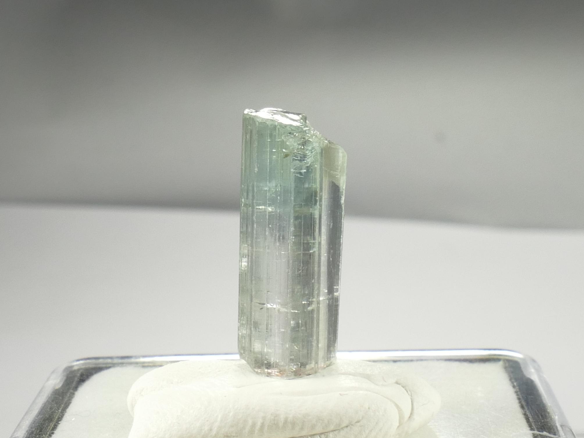 8.59ct 18.5mm Spécimen de Tourmaline naturelle bleu vert Afghanistan (#PB437)
