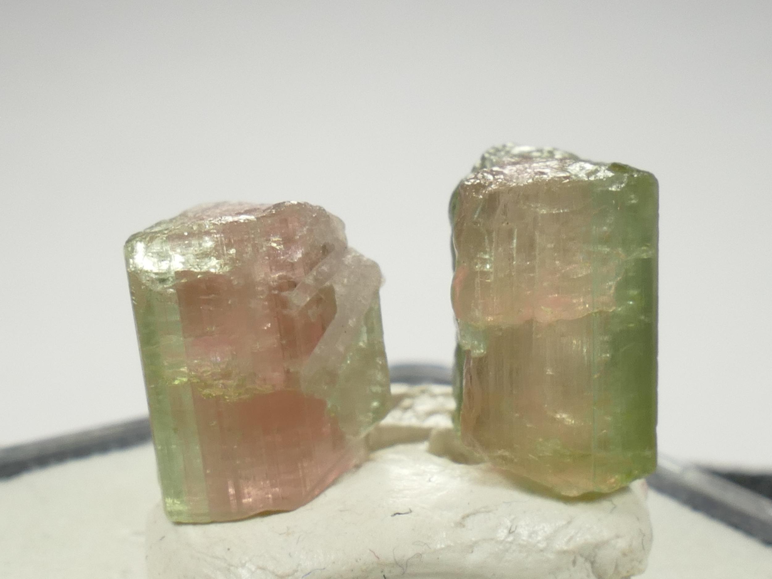 2 Spécimens de Tourmaline bicolore brute, melon d\'eau, forme naturelle 12,8ct Afghanistan (#PB557)