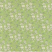 Liberty Capel vert coloris L 20x135 cm