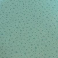 Tissu Rodeo Rider mini étoiles fond menthe 20 x 110 cm
